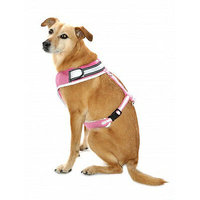 Flashing Harness Pink - Accessories - Dog - Night & Safety Wear