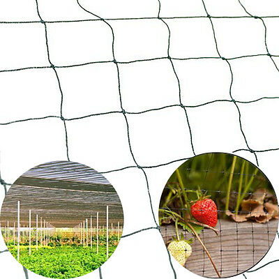 NEW Bird Netting 25' X 50' Net Netting For Bird Poultry Avaiary Game Pens 683