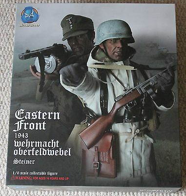 did action figure ww11 german steiner 1/6 12'' boxed dragon cyber hot toy