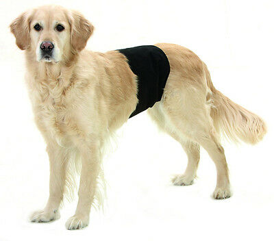 Pantalon imperméable chien pour Grossier Monsieur Encapsule Plus Male bonding