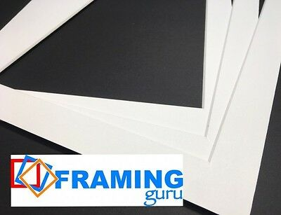 Picture And Photo Mounts in White / White Core Professional Computer Cut Boards