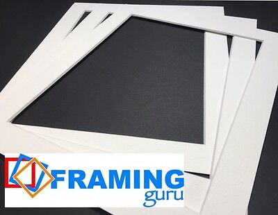 Picture And Photo Mounts in OffWhite / White Core Professional Computer CutBoard