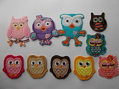 Novelty Owl Embroidered Iron / Sew on Patch Applique Badge