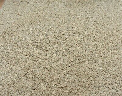 Luxury Soft Beige Sand Saxony 5.65m x4m Carpet Remnant Action Back FREE DELIVERY