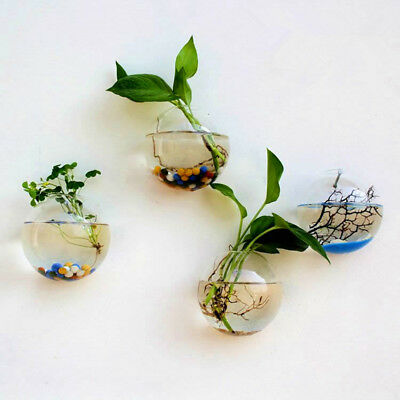 Home Mounted Hanging Bubble Bowl Plant Fish Tank Aquarium Acrylic Pot Wall Decor