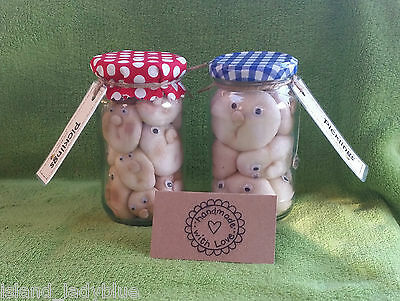 PICKLED PEOPLE ~ quirky secret santa strange weird unusual xmas novelty gift