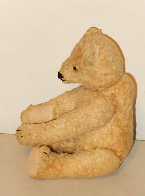 Very Rare Antique 1940's Old German Steiff Bear