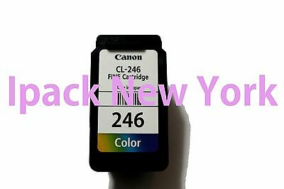 Empty Canon Pg-246 Color Ink Cartridge For Canon Pixma Mg 2520 & Pixma Mg 2900