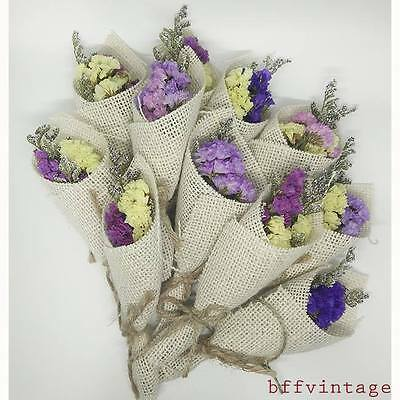 10xPcs.Nature Bouquet Miniature Pink Ivory Violet Pastel Dried Flower Flora Sack