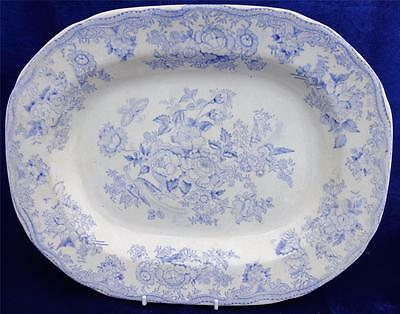 Large Antique Blue & White Asiatic Pheasants Meat Plate Platter Ashet 1892 16 in