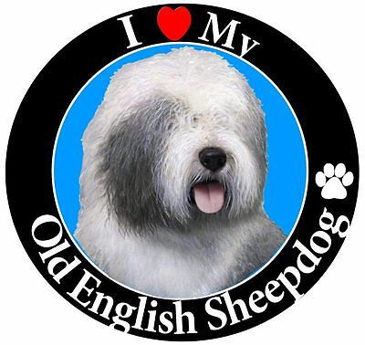 Old English Sheepdog Car Magnet