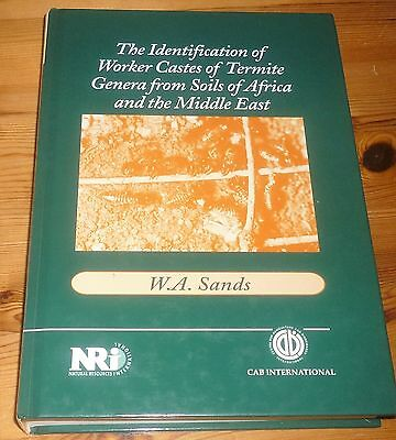 TERMITE GENERA Of SOUTH AFRICA & MIDDLE EAST - WORKER CASTES - Sands HB - SCARCE