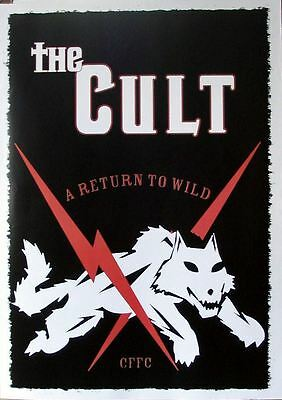THE CULT a return to wild CFFC Large POSTER new !