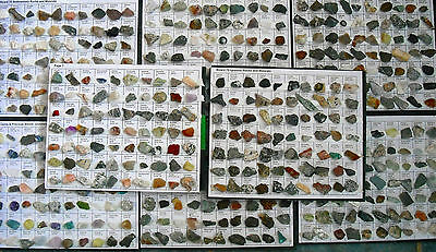 Classified Rocks & Minerals Collection 1000 Specimen