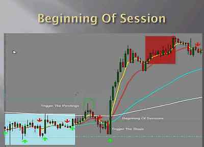 Steve Mauro Beat The Market Maker 10 Week Bootcamp options trading dvd course