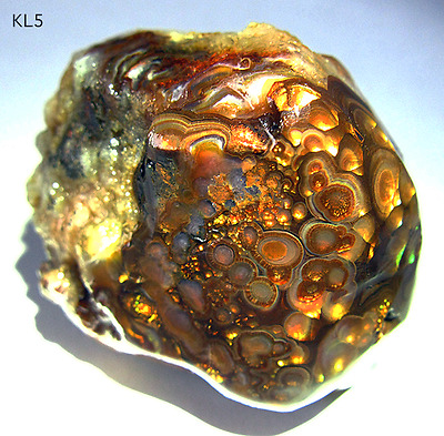 Large Intense Colors Fire Agate Rough 66g - More Fire Agates Slabs Cabs Here