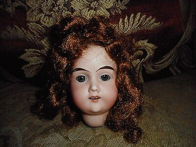 Antique germany doll head only parts As Is