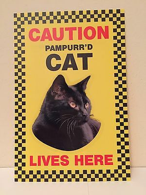Beware Of The Cat Caution Sign Pampurr'd Cat Lives Here