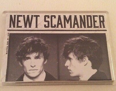 Newt Scamander Fantastic Beasts And Where To Find Them    fridge magnet
