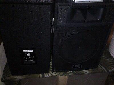Peavey ST- 15  pa speakers passive 15 inch with leads
