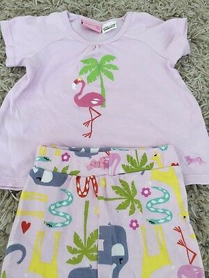 peter alexander Baby Girls Pjs