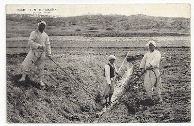 Early Japan Occupied Korea Postcard Farmers Digging Irrigation Ditch Chosen Good