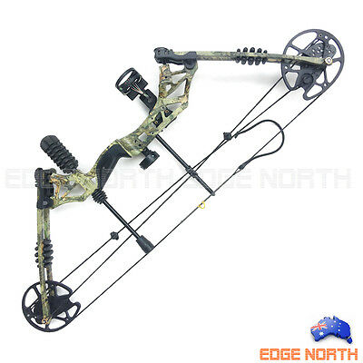 2017 New Compound Bow Pro 30-60lbs Hunting Target Arrows Archery Deluxe Kit