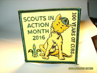 Scouts In Action Month 2016