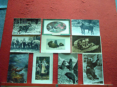18 Old Postcards Animals