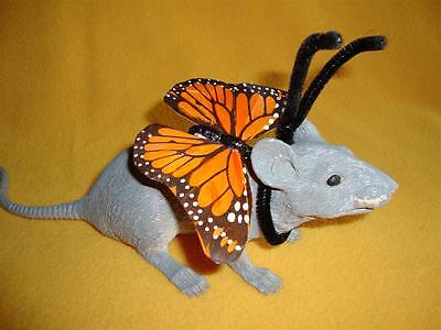 Monarch Butterfly Costume Rat from Petrats