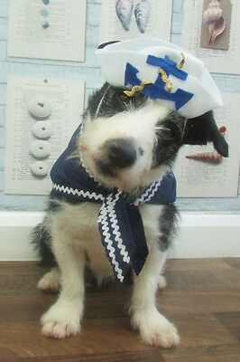 Little Dogs Hello Sailor Fancy Dress Cotume hand made by Mrs Nibbles