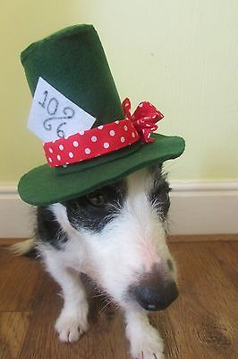 Dogs Top Hat , Mad Hatter Fancy dress, hand made in felt by Mrs Nibbles