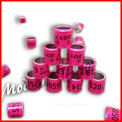 20 x GB 2017 (Pink Color) 8mm Quality pigeon rings