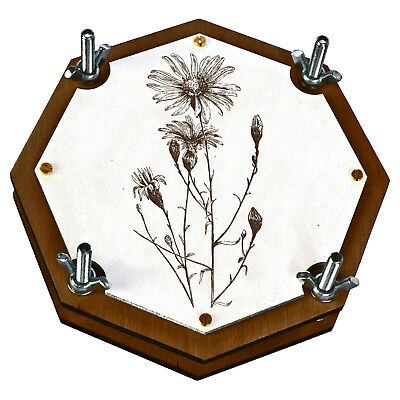 Botanical Flower Leaf Press For Herbarium