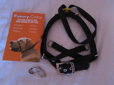 canny collar size 5 brand new