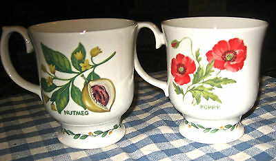 """Roy Kirkham 2 Mugs. """"herbs & Spices"""". Flowers Leaves & Seeds, Good Colour, Excon"""