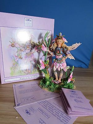 Christine Haworth Faerie Poppets 'keeper Of The Bee Orchis' Leonardo Collection