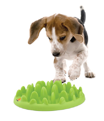 Company of Animals Dog/Puppy/Cat Slow Feeder Bowls