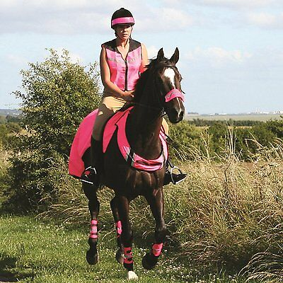NEW Equisafety Noseband Bridle Attachment - High Viz Pink, One Size