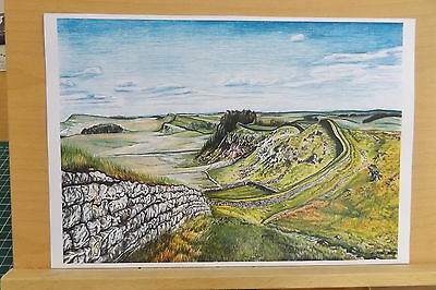 Limited Edition A4 colour print of Hadrians Wall Drawing