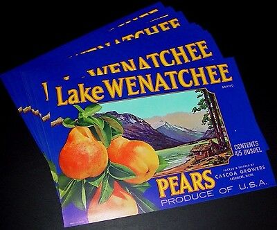20 MINT Vintage 1940s-50s Crate Packing Label Lake Wenatchee Pears Cashmere WA