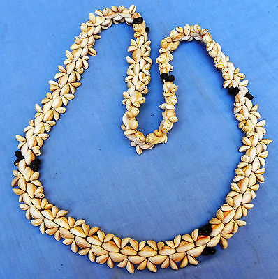 Shell Necklace from the South Pacific
