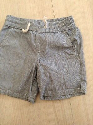 Seed Shorts Size 2/3