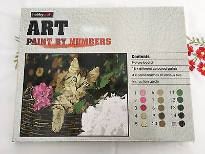 hobbycraft art paint by numbers cat scene