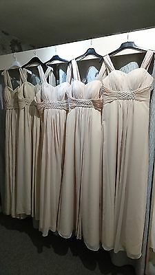 Job lot 5 xChampagne Excellent Bridesmaids/Evening/Prom dresses in size 10 12 18
