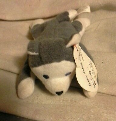 Nook the Husky Teenie Beanie Babies by TY with tag