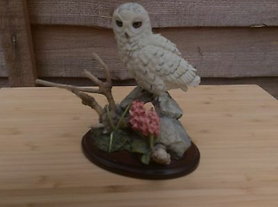 Country Artist Snowy Owl With Foxgloves 01940