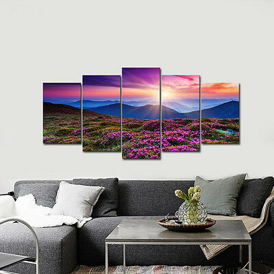 Picture Photo Canvas Print Home Decor Wall Art Landscape Flower Mountain Framed