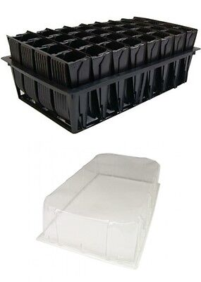 Deep Root Trainer Trainers Seed Tray with Lid 32 Cells Rootrainer Roottrainer