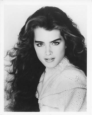 Brooke Shields 8x10 photo pretty young actress Blue Lagoon star  (sp063)